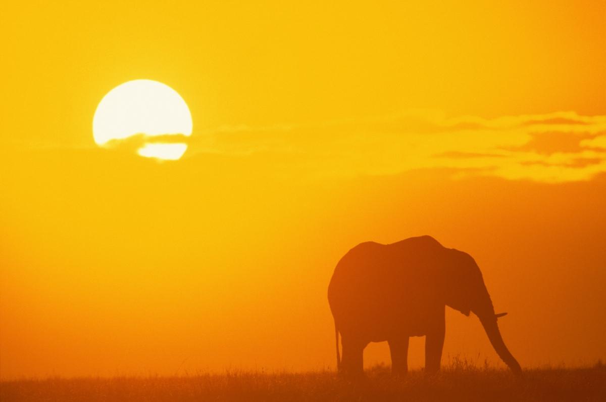 top ten features in africa